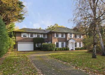 Thumbnail 6 bed detached house to rent in Patmore Lane, Burwood Park, Walton On Thames