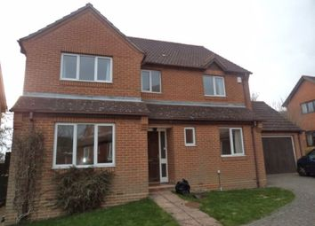Thumbnail 4 bed detached house to rent in Islay Gardens, Cosham, Portsmouth