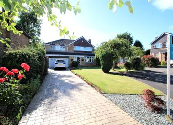 Thumbnail 5 bed detached house for sale in Park Close, Darrington