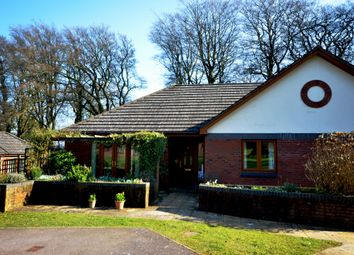 Thumbnail 2 bed bungalow for sale in 20 The Paddocks, Gittisham Hill Park, Honiton, Devon