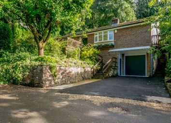 Thumbnail 4 bed detached bungalow for sale in Beech Hill Road, Headley, Bordon