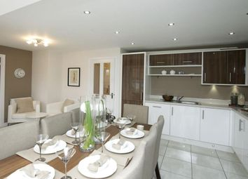 """Thumbnail 4 bedroom detached house for sale in """"Halstead"""" at Ripon Road, Kirby Hill, Boroughbridge, York"""