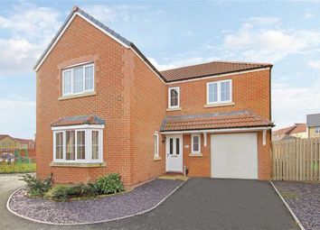 Thumbnail 4 bed detached house for sale in Criollo Place, Moulden View, Swindon