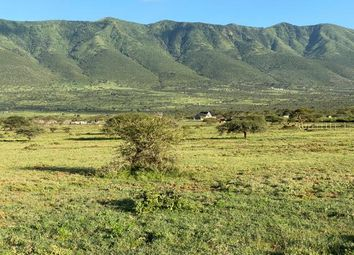 Thumbnail Land for sale in Kimuka Centre, Rift Valley, Kenya