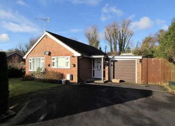 Thumbnail 3 bed detached bungalow for sale in Winston Rise, Four Marks, Hampshire