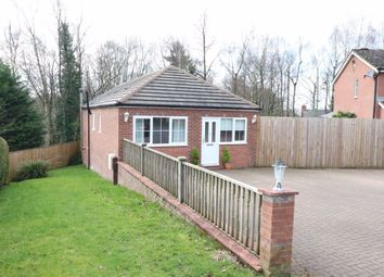 Thumbnail 3 bedroom bungalow to rent in The Whins, Heads Nook, Brampton