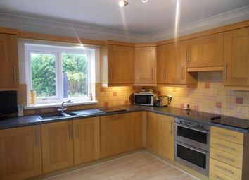 Thumbnail 4 bed detached house to rent in Hendrefoilan Avenue, Sketty, Swansea