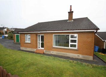 Thumbnail 3 bed detached bungalow to rent in The Drumlins, Ballynahinch