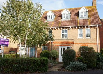 Thumbnail 4 bed detached house for sale in Rydal Drive, Maldon