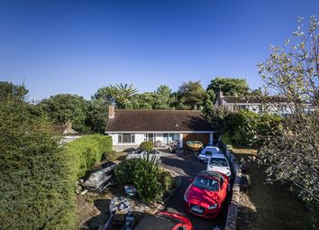 Thumbnail Bungalow for sale in Avalon, Canford Cliffs, Poole