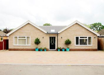 Thumbnail 4 bed detached house to rent in Woodlands, Lakenheath, Brandon
