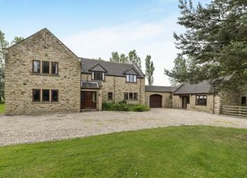 Thumbnail 5 bedroom equestrian property for sale in Busby, Stokesley, Middlesbrough