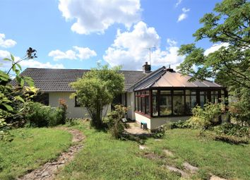 4 bed detached bungalow for sale in Mill Lane, Mere, Warminster BA12