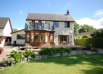 Thumbnail 4 bed detached house to rent in Cold Inn, Kilgetty