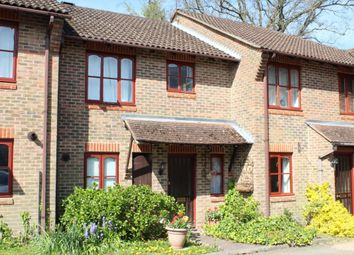 Thumbnail Terraced house to rent in Pottery Court, Farnham