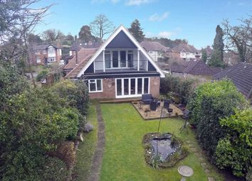 Thumbnail 4 bedroom bungalow for sale in Tuddenham Road, Ipswich