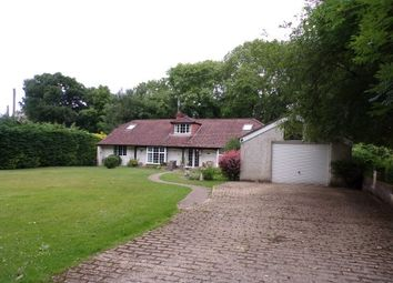 Thumbnail 5 bed property to rent in Woodgreen, Fordingbridge