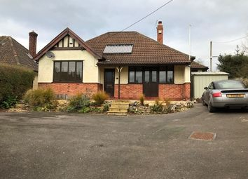 Thumbnail 4 bedroom bungalow to rent in Bath Road, Wells
