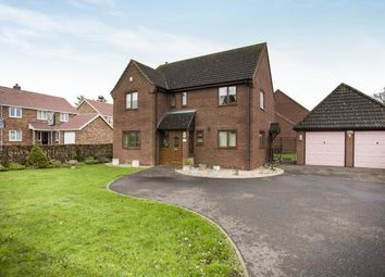 Thumbnail 4 bedroom detached house for sale in Attleborough, Norwich, Norfolk