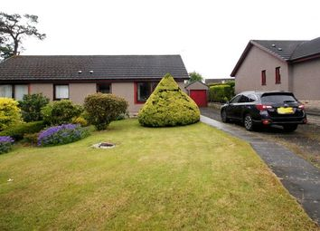 Thumbnail 2 bed bungalow for sale in Mill Gardens, Powmill, Dollar