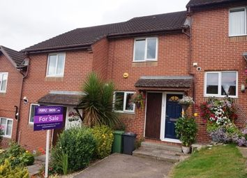Thumbnail 2 bedroom terraced house for sale in Cornflower Hill, Exeter
