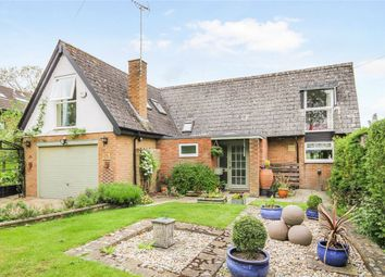 Thumbnail 4 bed detached house for sale in Park Road, Melchbourne, Bedford