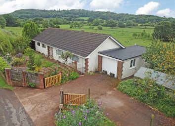 Thumbnail 3 bed detached bungalow for sale in Rewe, Exeter