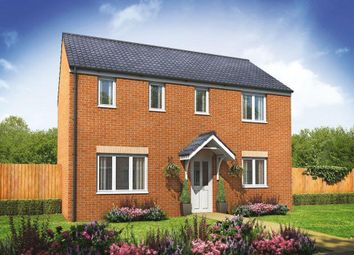 Thumbnail 3 bed detached house for sale in Plot 174 Clayton, Cardea, Peterborough