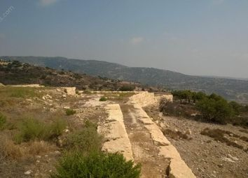Thumbnail Land for sale in Akoursos, Paphos, Cyprus