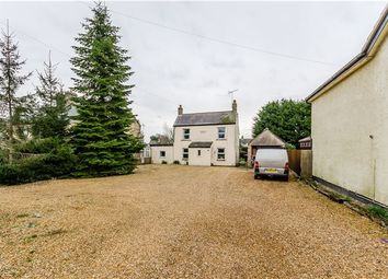 Thumbnail 4 bedroom detached house for sale in Ely Road, Littleport, Ely