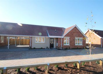 Thumbnail 3 bed bungalow for sale in Old Kirton Road, Trimley St. Martin, Felixstowe