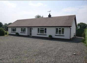 Thumbnail 3 bed bungalow to rent in Drefach, Lampeter