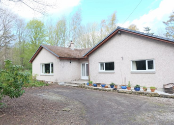 Thumbnail 5 bed detached bungalow to rent in Whiskers, Arabella, Tain