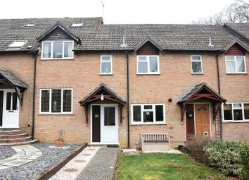 Thumbnail 2 bedroom terraced house for sale in Selborne Walk, Tadley, Hampshire