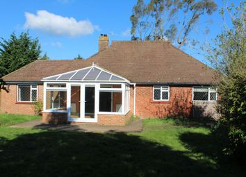 Thumbnail 3 bed detached bungalow to rent in Summers Road, Farncombe