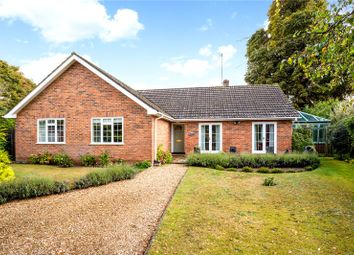 Thumbnail 3 bed detached bungalow for sale in Conford Drive, Shalford, Guildford, Surrey