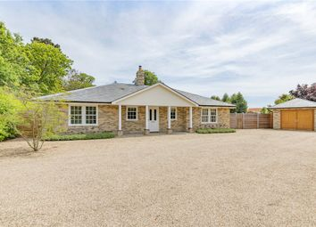 Thumbnail 3 bed bungalow for sale in High Road, Trimley St. Martin, Felixstowe
