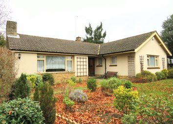Thumbnail 3 bed detached bungalow for sale in Greenways Drive, Maidenhead
