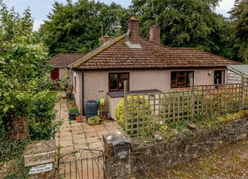Thumbnail 5 bed detached bungalow for sale in Back Road, Catbrook, Chepstow, Monmouthshire