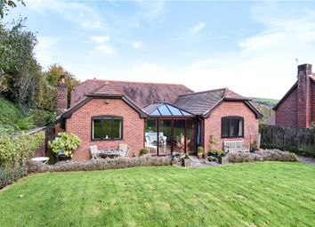 Thumbnail 3 bed detached bungalow for sale in Hilton, Blandford Forum