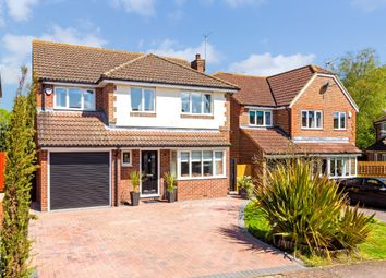 Thumbnail 4 bed detached house for sale in Orchard Drive, Standon, Ware
