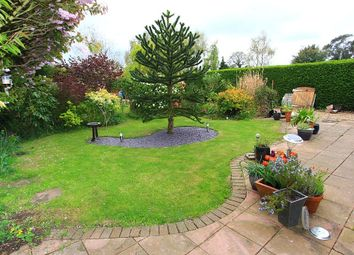 Thumbnail 3 bed semi-detached house for sale in Hillcrest, Acle, Norwich, Norfolk
