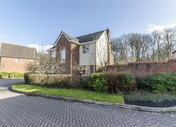 Thumbnail 4 bed detached house to rent in Sir Galahad Road, Chandler's Ford, Eastleigh, Hampshire