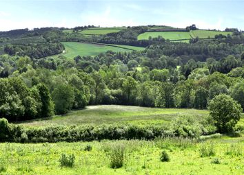 Thumbnail 4 bed detached house for sale in Burrington, Umberleigh, Devon