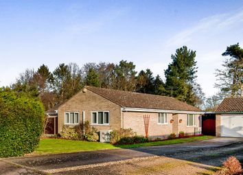 Thumbnail 5 bed detached bungalow for sale in Cromwell Close, Weeting, Brandon