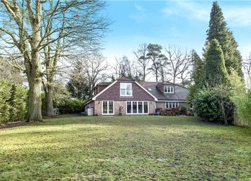Thumbnail 4 bedroom detached house for sale in Kings Ride, Ascot, Berkshire