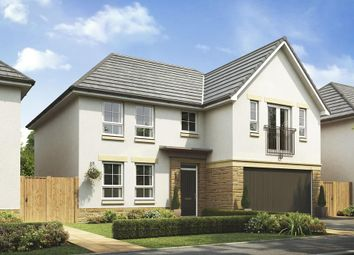 """Thumbnail 4 bedroom detached house for sale in """"Colville"""" at Main Street, Roslin"""