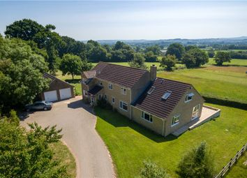 Thumbnail 4 bed equestrian property for sale in Windmill Hill, Ashill, Ilminster, Somerset
