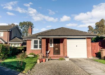 Thumbnail 3 bed detached bungalow for sale in Redburn Avenue, Culloden, Inverness