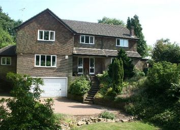 Thumbnail 4 bed detached house to rent in Church Lane, Challock, Ashford